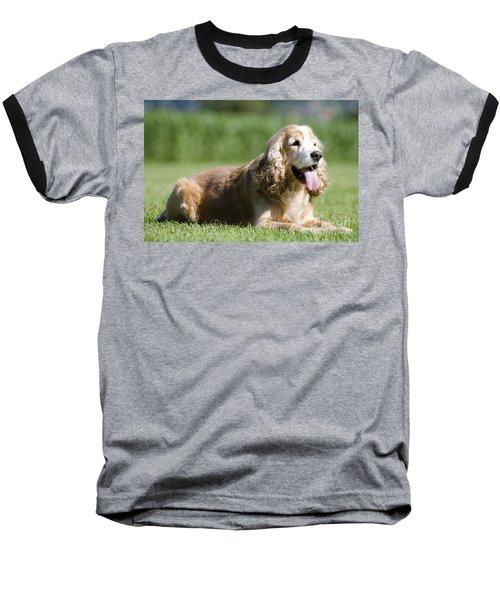 Dog Lying Down On The Green Grass Baseball T-Shirt