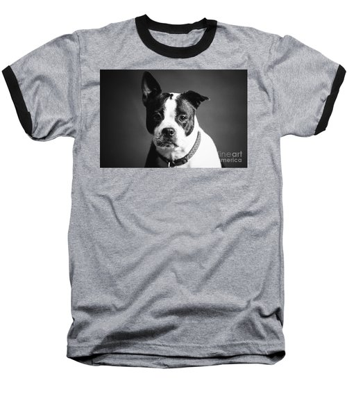 Dog - Monochrome 1 Baseball T-Shirt
