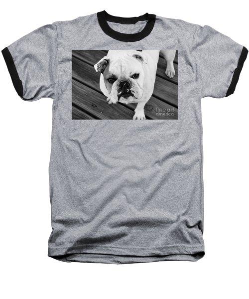 Dog - Monochrome 6 Baseball T-Shirt
