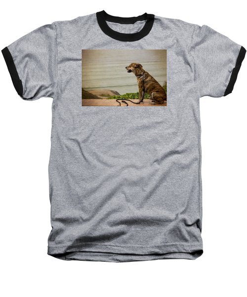 Dog On The Beach Baseball T-Shirt