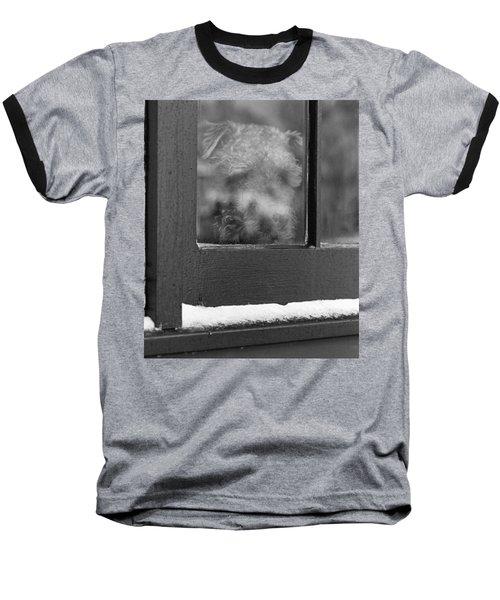 Doggy In The Window Baseball T-Shirt
