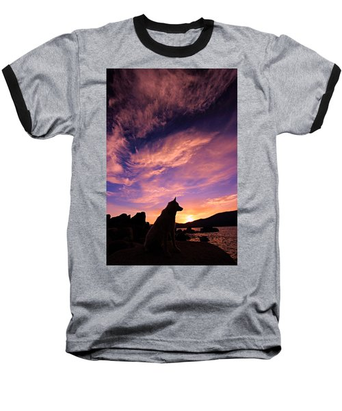 Dogs Dream Too Baseball T-Shirt by Sean Sarsfield