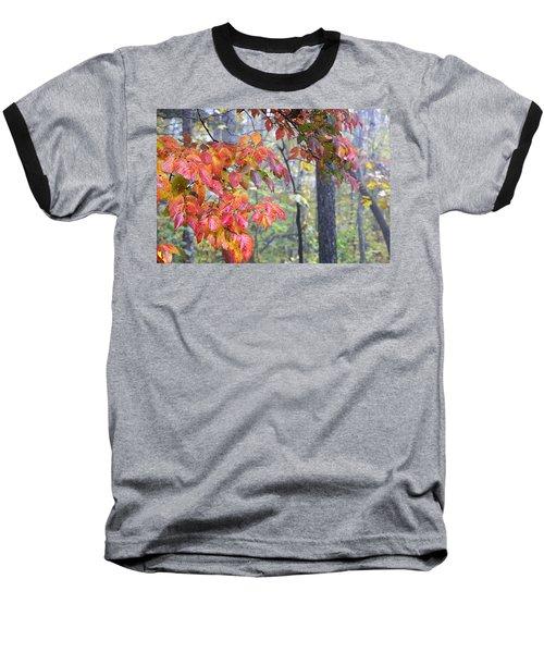Dogwood 2 Baseball T-Shirt