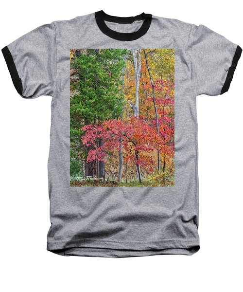 Dogwood And Cedar Baseball T-Shirt