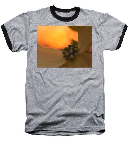 Dogwood Bloom Baseball T-Shirt by Craig Szymanski