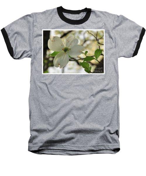 Dogwood Bloom Baseball T-Shirt