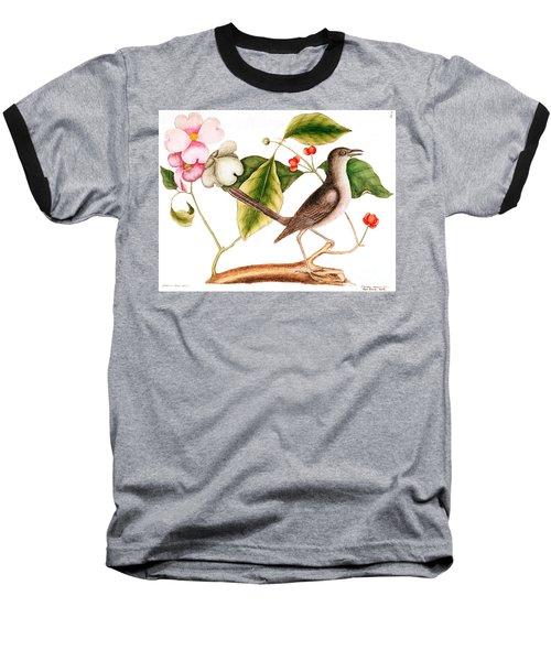 Dogwood  Cornus Florida, And Mocking Bird  Baseball T-Shirt by Mark Catesby