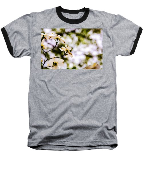 Dogwoods Under The Pines Baseball T-Shirt by John Harding