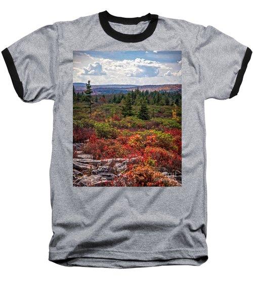 Dolly Sods Wilderness In Autumn 4273 Baseball T-Shirt