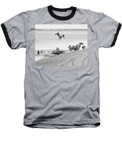Dolphin And Pelican Party Baseball T-Shirt