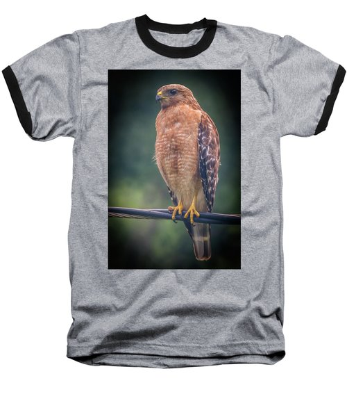 Baseball T-Shirt featuring the photograph Dominique The Hawk by Michael Sussman