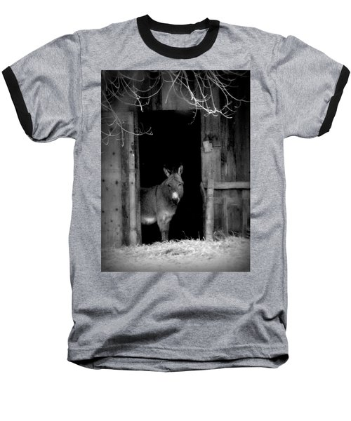 Donkey In The Doorway Baseball T-Shirt by Michael Dohnalek