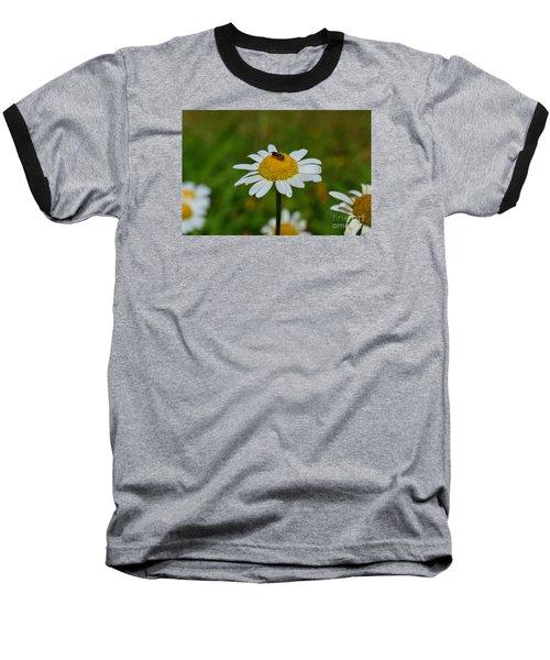 Don't Bug Me Baseball T-Shirt by Lew Davis