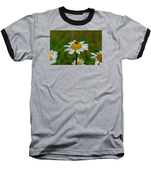 Don't Bug Me Baseball T-Shirt