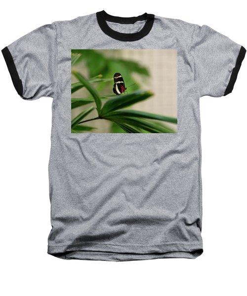 Doris Longwing Butterfly Baseball T-Shirt