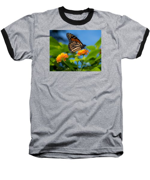 Dote Baseball T-Shirt by Don Spenner