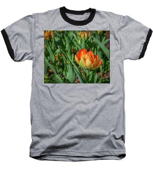 Double Multicolor Tulips Baseball T-Shirt