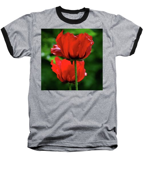 Double Red Poppies Baseball T-Shirt