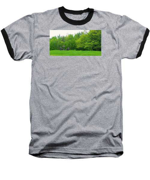 Down On The Farm Baseball T-Shirt