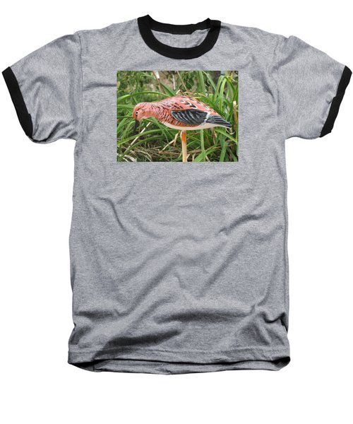 Downward Sanderling Baseball T-Shirt by Kevin F Heuman