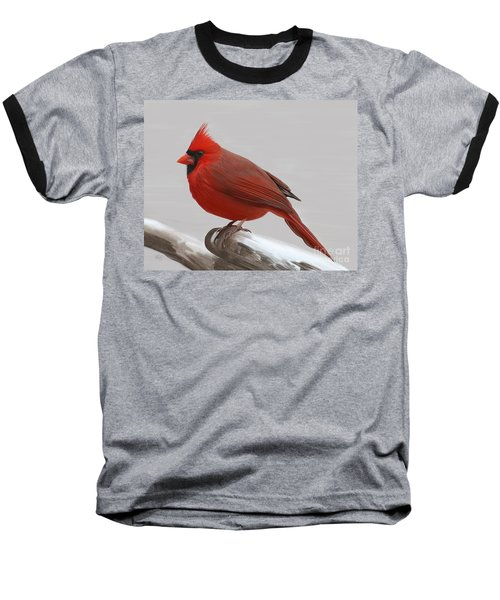 Downy Winter Male Baseball T-Shirt by Rand Herron