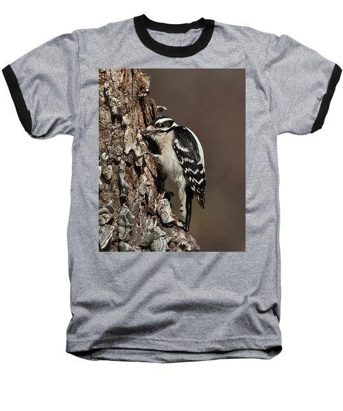 Downy Woodpecker's Secret Stash Baseball T-Shirt by Lara Ellis