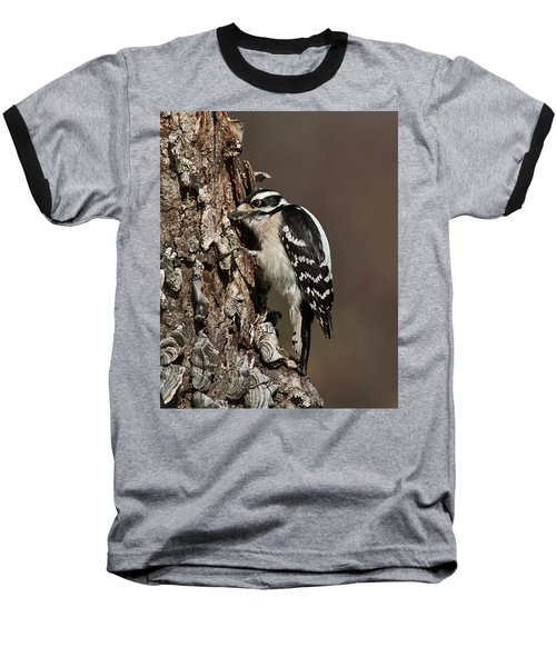 Downy Woodpecker's Secret Stash Baseball T-Shirt
