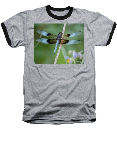 Dragonfly 12 Baseball T-Shirt