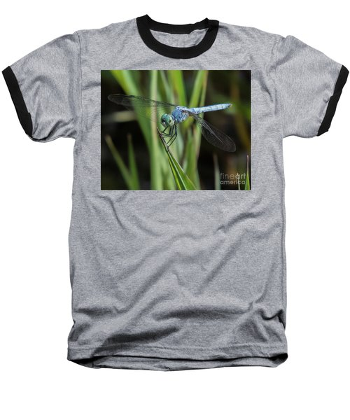 Dragonfly 13 Baseball T-Shirt