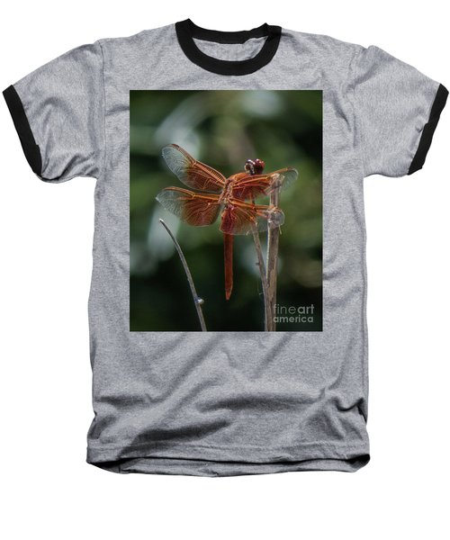 Dragonfly 9 Baseball T-Shirt