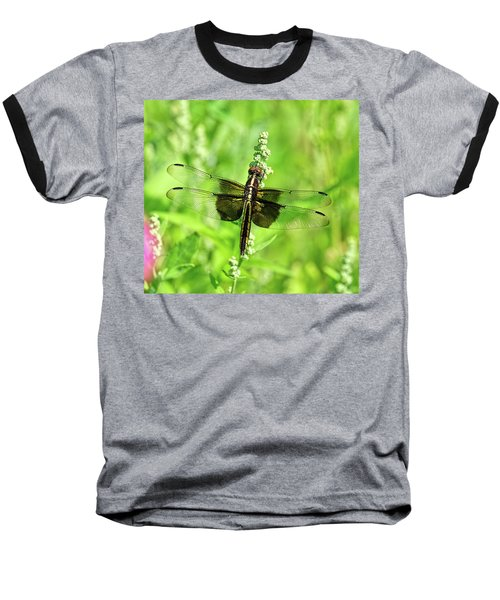 Dragonfly Beauty Baseball T-Shirt