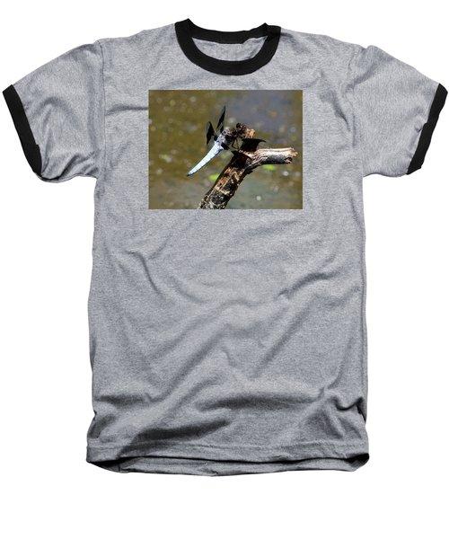 Dragonfly Baseball T-Shirt by Kathy Eickenberg