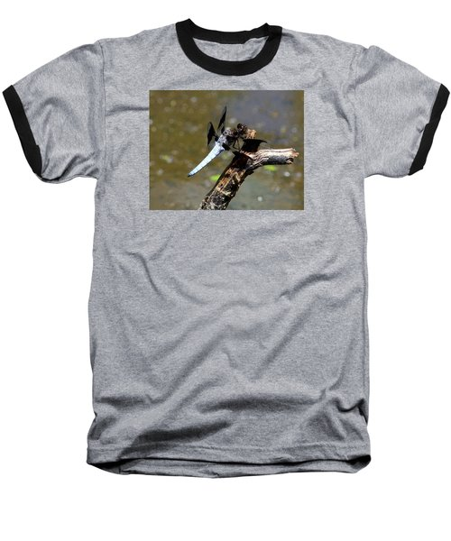 Dragonfly Baseball T-Shirt