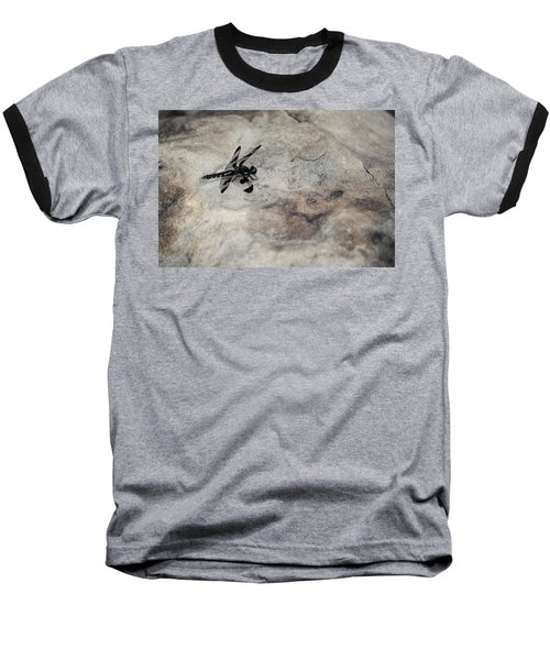 Dragonfly On Solid Ground Baseball T-Shirt