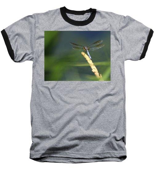 Dragonfly New York Baseball T-Shirt
