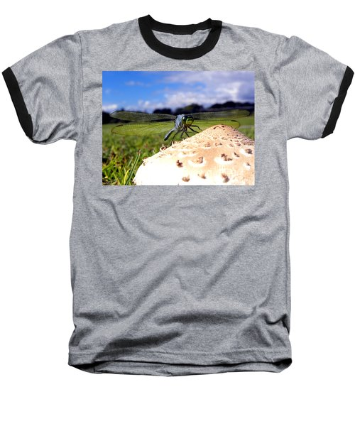 Dragonfly On A Mushroom Baseball T-Shirt