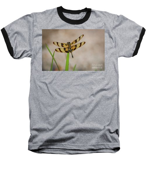 Dragonfly On Grass Baseball T-Shirt