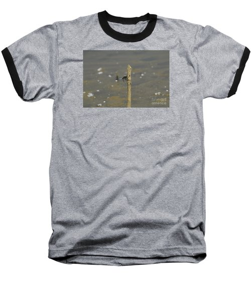 Dragonfly On Old Wood Baseball T-Shirt