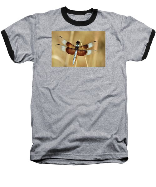 Baseball T-Shirt featuring the photograph Dragonfly On Reed by Sheila Brown