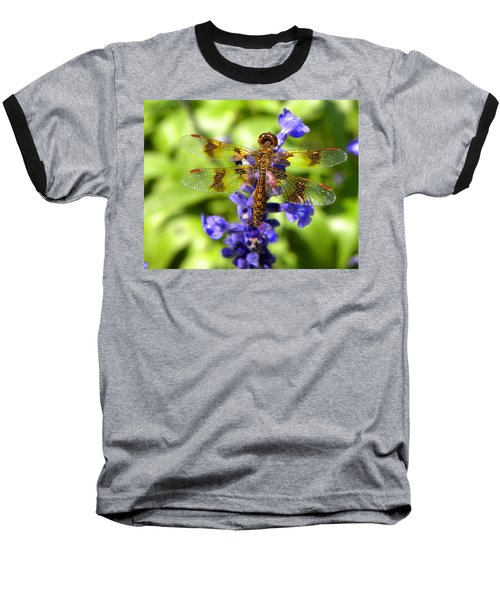 Baseball T-Shirt featuring the photograph Dragonfly by Sandi OReilly