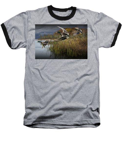 Drake Mallard Ducks Coming In For A Landing Baseball T-Shirt