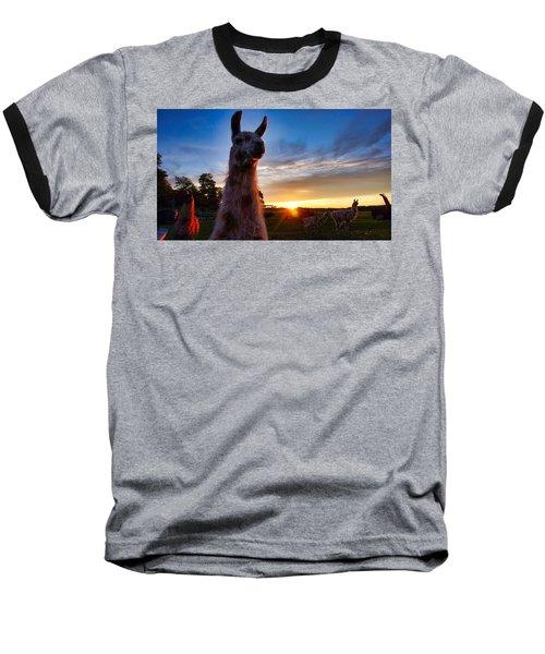 Drama Llamas Baseball T-Shirt