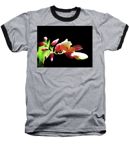 Dramatic Oriental Orchid Baseball T-Shirt by Tina M Wenger