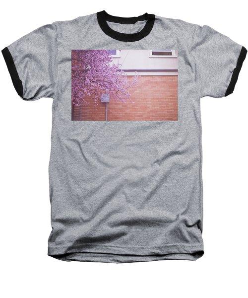 Dreaming Of Blossoming Baseball T-Shirt