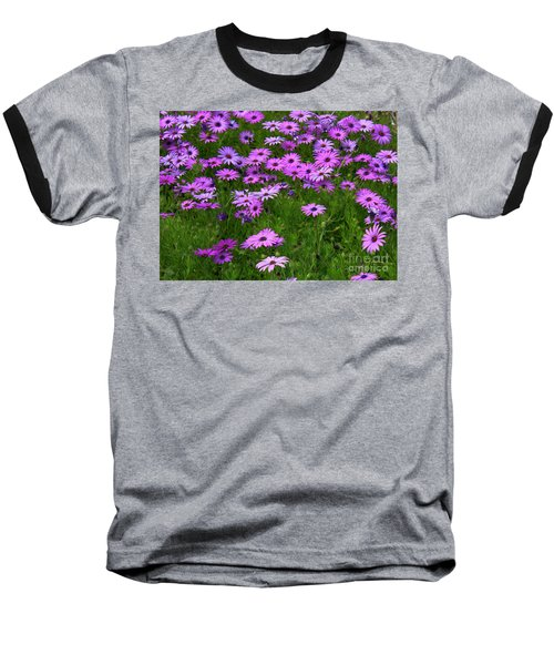 Dreaming Of Purple Daisies  Baseball T-Shirt