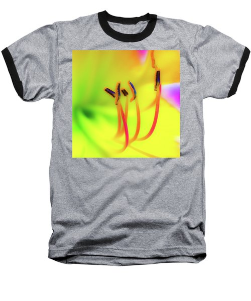 Dreamy Daylily Baseball T-Shirt