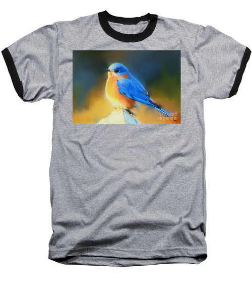 Dressed In Blue Baseball T-Shirt by Tina  LeCour