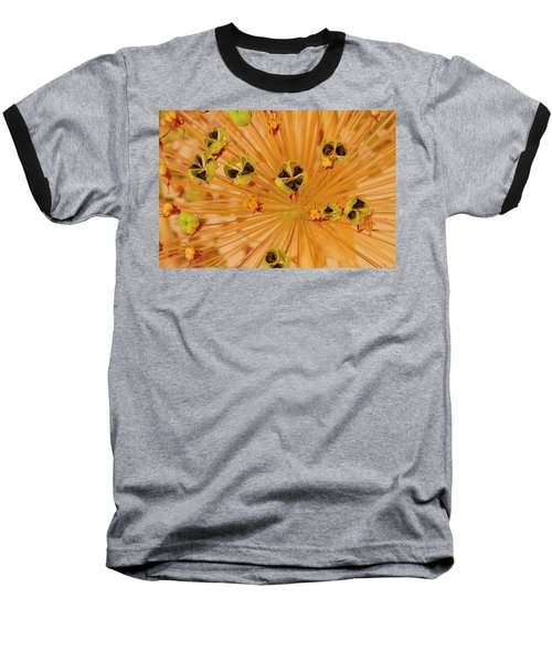 Dried Allium Seed Macro Baseball T-Shirt