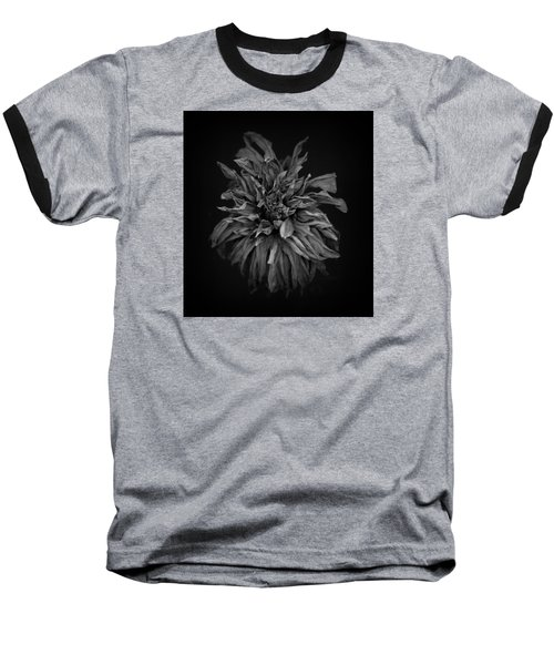 Dried Dahlia 2 Baseball T-Shirt