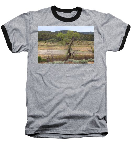 Dried Elizabeth Lake Baseball T-Shirt